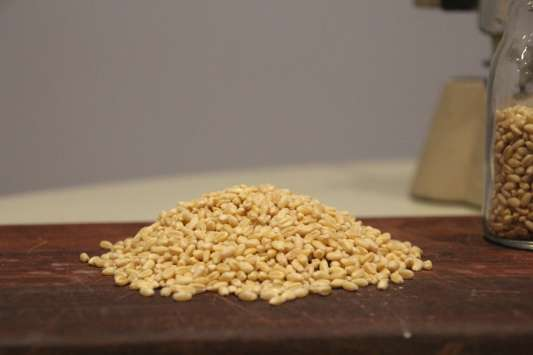 Mirfak-grain-wheat-grain-wholesale-grain-supplier-Melbourne-Sydney-Australia.jpg